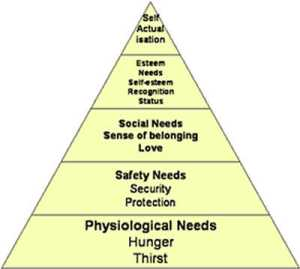 Maslow's Hierarch of Needs